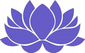 fleur de lotus-02